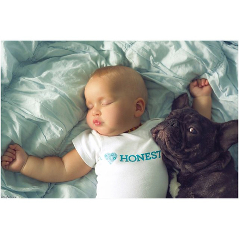 Baby and French Bulldog Embed 2