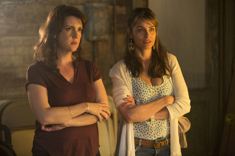 Amanda Peet: TK Quote Pegged to Role on HBO's Togetherness