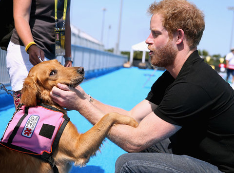 Prince Harry Invictus Games 1 - Embed 2016