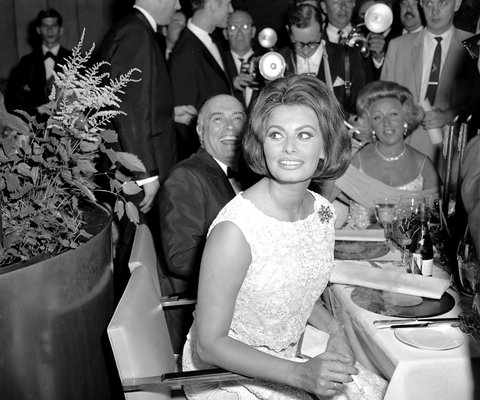 Four Seasons - Sophia Loren LEAD