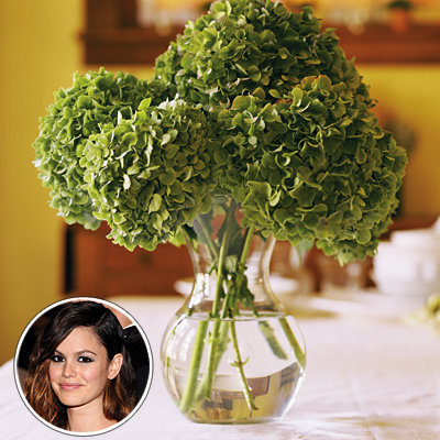 Summer Entertaining - Experts' Best Party Tricks - Rachel Bilson