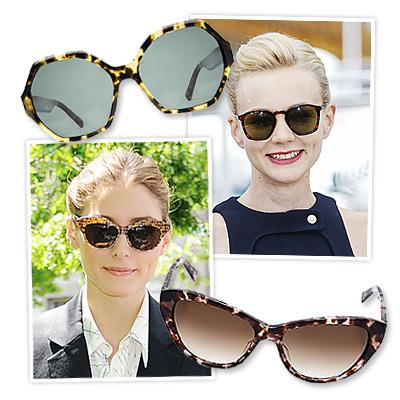 Find Your Perfect Sunglasses
