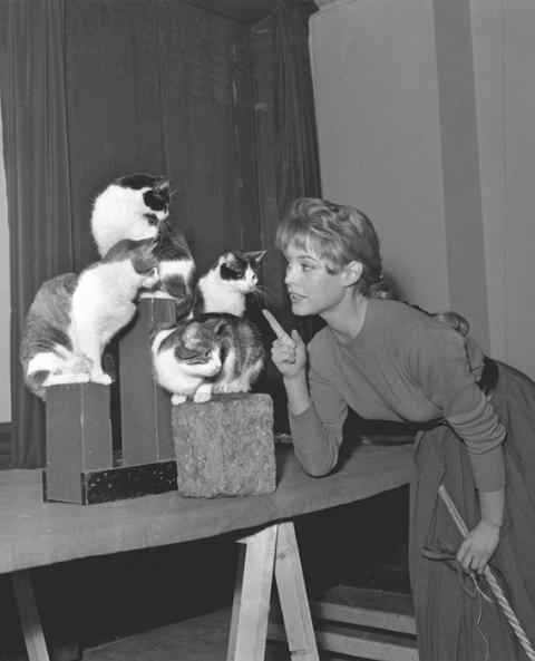 Brigitte Bardot with cats