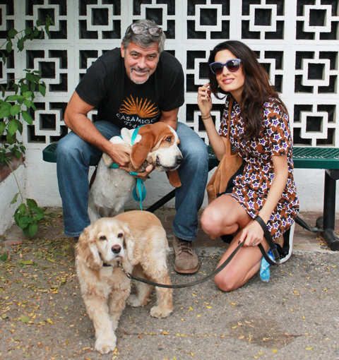 <p>George Clooney, Amal, Millie and Louie</p>