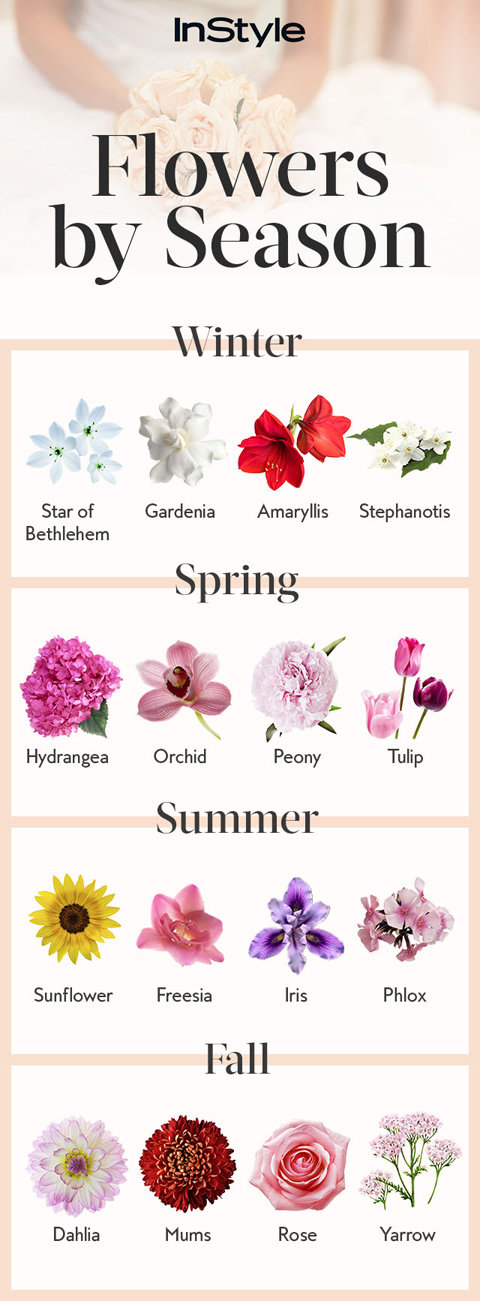 Flowers By Season - Embed