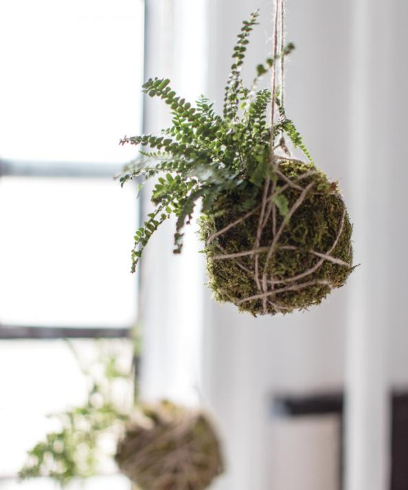 Home decor trend diy kokedama hanging plants instyle for Home decor with plants
