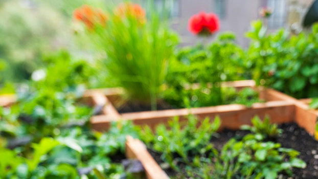 How to turn your apartment into an indoor garden how i turned my how to turn your apartment into an indoor garden how i turned my nyc apartment into an indoor garden instyle workwithnaturefo