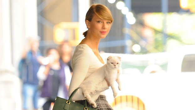 The 1 Aspect of Taylor Swift's Style That Hasn't Changed Over the Years