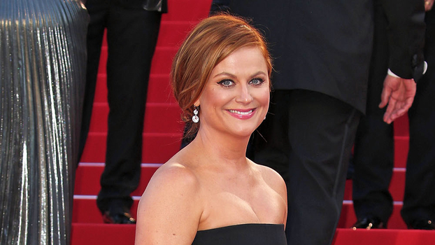 Amy Poehler's Best Red Carpet Looks