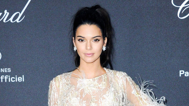 Kendall Jenner's Red Carpet Style