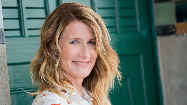 Laura Dern On How Men In Hollywood Can Support Time S Up