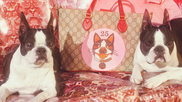0c9bcca1790262 Shop Gucci s Year of the Dog Collection
