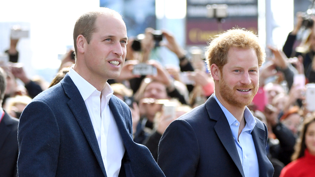 Apparently, Prince Harry and Prince William Are Feuding — Not Meghan Markle and Kate Middleton