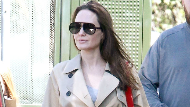 9ef31a0cf Angelina Jolie s  138 Everlane Coat Looks So Expensive