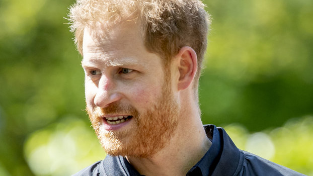 "Prince Harry Discussed ""Missing"" Princess Diana After Baby Archie's Birth"