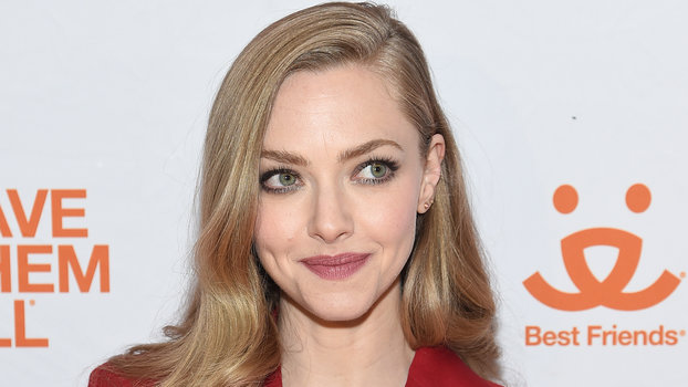 Amanda Seyfried Just Started Some Major Influencer Drama with the Founder of Something Navy