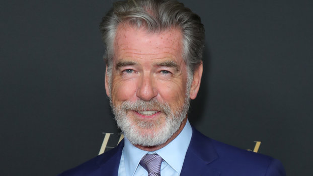 Pierce Brosnan's Model Sons Are Coming to TV