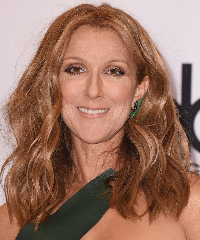 Celine Dion Posts Rare Photo of Her Three Sons from the Holidays