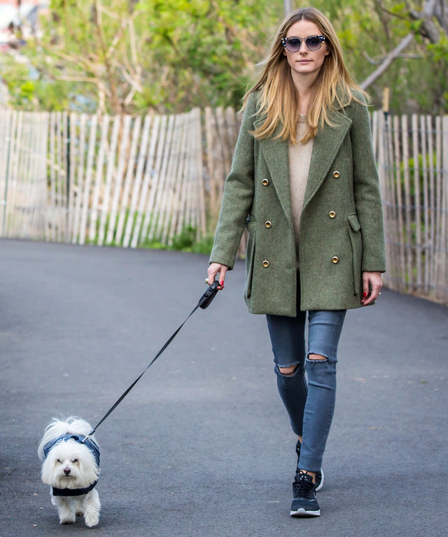 EXCLUSIVE Olivia Palermo, who just returned from Coachella, is seen taking her loyal companion Mr Butler for a walk in the park in Brooklyn, New York  Featuring: Olivia Palermo Where: NY, New York, United States When: 25 Apr 2016 Credit: WENN.com  **Not a