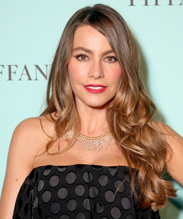 BEVERLY HILLS, CA - OCTOBER 13:  Actress Sofia Vergara attends Tiffany & Co.'s unveiling of the newly renovated Beverly Hills store and debut of 2016 Tiffany masterpieces at Tiffany & Co. on October 13, 2016 in Beverly Hills, California.  (Photo by Todd W