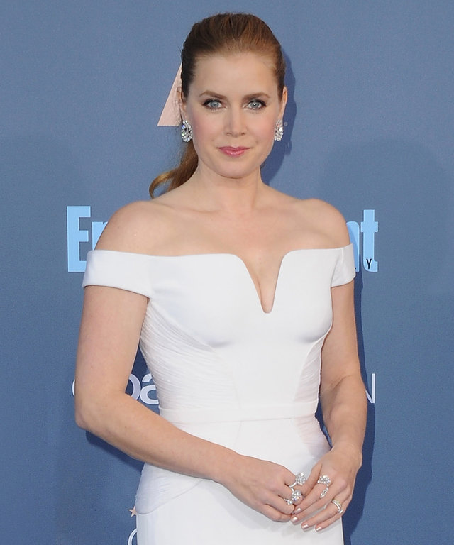 SANTA MONICA, CA - DECEMBER 11:  Actress Amy Adams arrives at The 22nd Annual Critics' Choice Awards at Barker Hangar on December 11, 2016 in Santa Monica, California.  (Photo by Jon Kopaloff/FilmMagic)