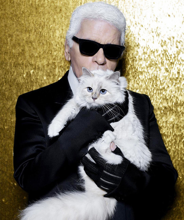Being a Cat Lady Never Smelled Better, Thanks to Choupette Lagerfeld