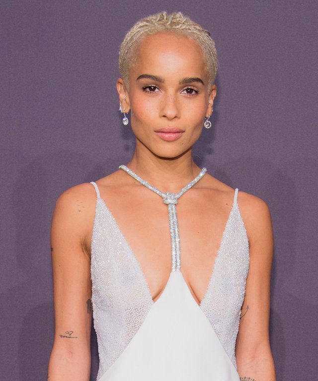 NEW YORK, NY - FEBRUARY 08:  Zoe Kravitz arrives at the 19th Annual amfAR New York Gala at Cipriani Wall Street on February 8, 2017 in New York City.  (Photo by Kevin Tachman/Getty Images)