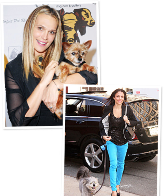 Molly Sims, Bethenny Frankel