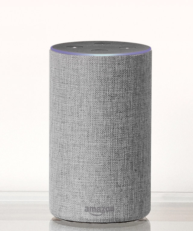 Amazon Echo Wedding Planner