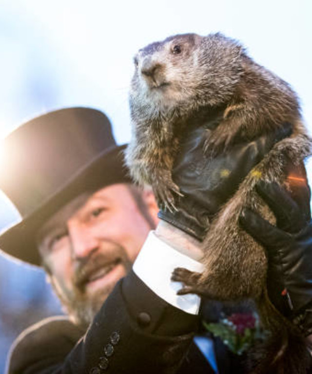 'Punxsutawney Phil' Makes Annual Winter Prediction On Groundhog Day