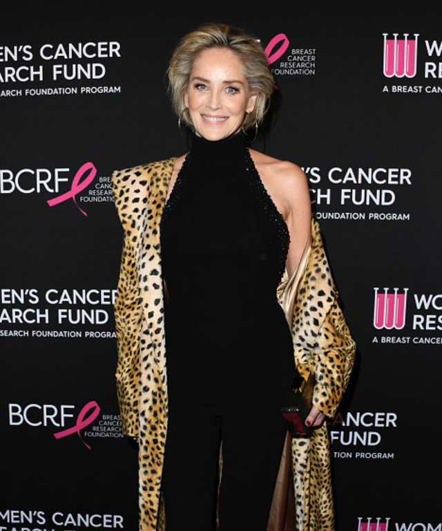 BEVERLY HILLS, CALIFORNIA - FEBRUARY 28:  Sharon Stone attends The Women's Cancer Research Fund's An Unforgettable Evening Benefit Gala at the Beverly Wilshire Four Seasons Hotel on February 28, 2019 in Beverly Hills, California. (Photo by Jon Kopaloff...