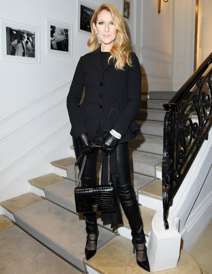 Is Celine Dion 2016's Most Stylish Star? A Look at the Diva's Recent Fashion Transformation