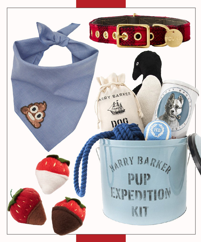 Holiday Gift Ideas for Pet Lovers