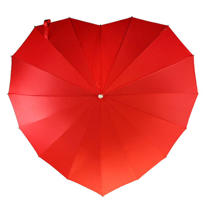 <p>Heart-Shaped Umbrella</p>
