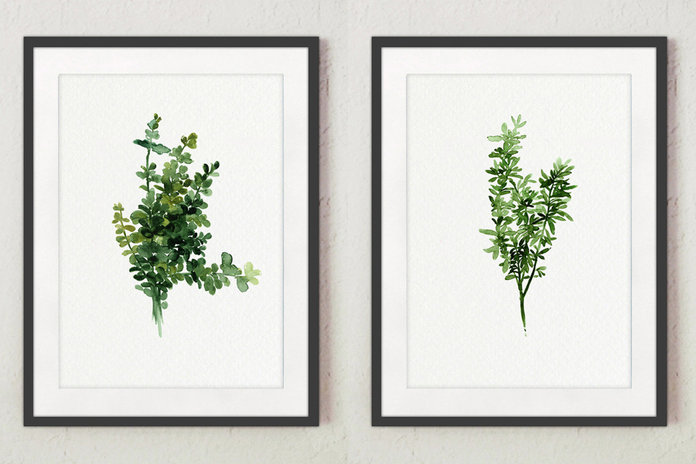 Thyme, Set of 2 Watercolor Painting