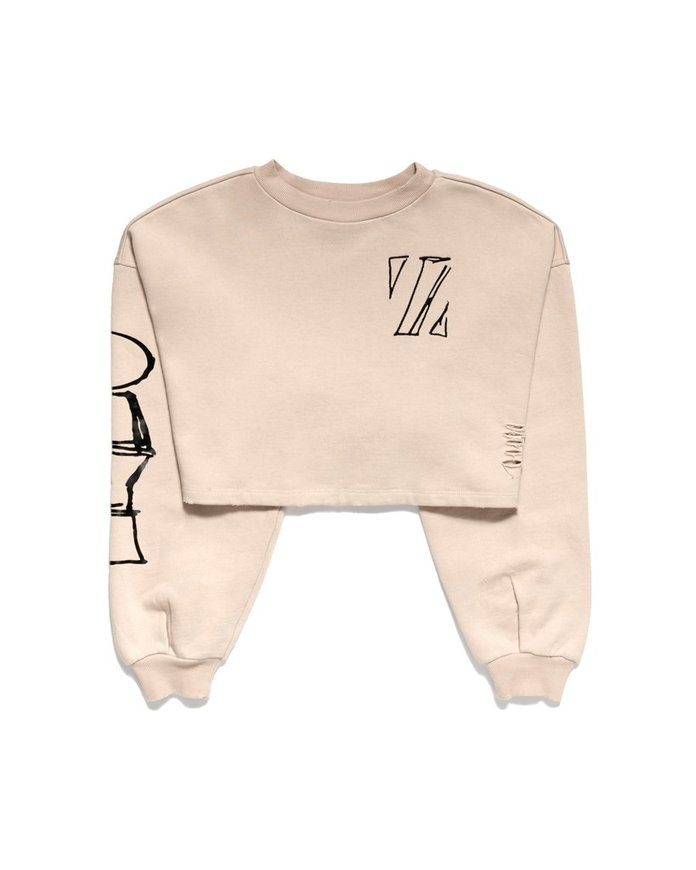 <p>crop sweatshirt</p>
