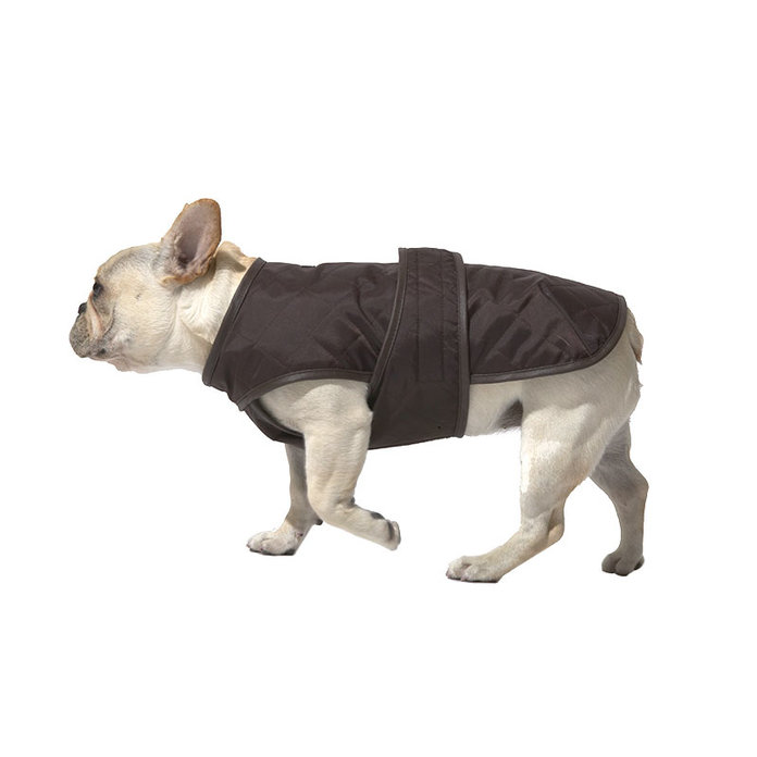Wagwear dog jacket