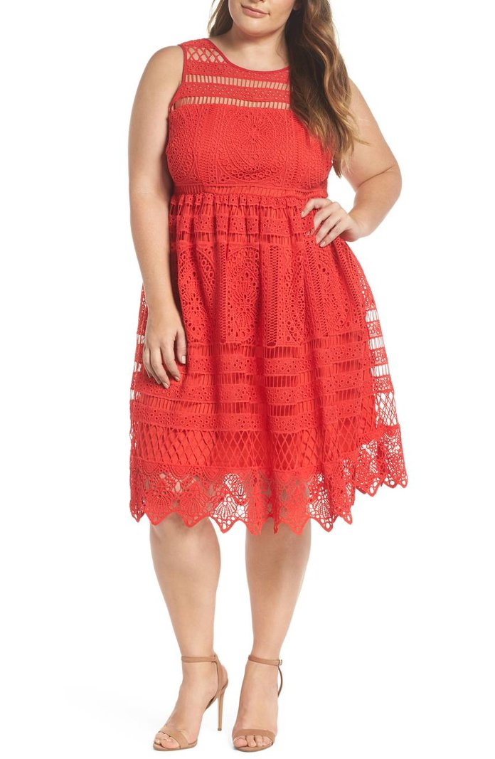 Eyelet Lace Fit & Flare Dress