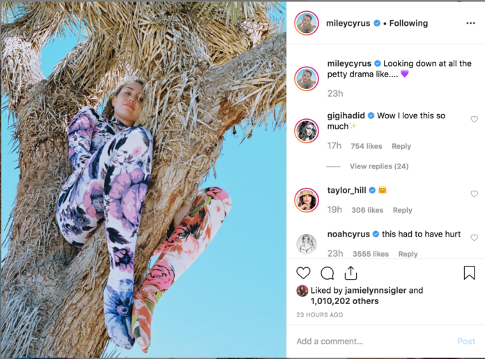 Miley Cyrus Angers Nature Lovers For Climbing Near-Endangered Joshua Tree