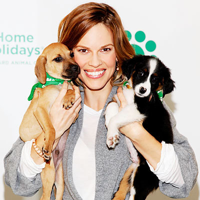 Hilary Swank Wants You to Adopt a Pet
