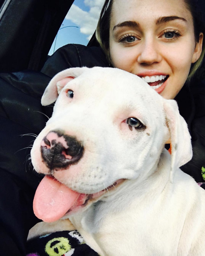 <p>Miley Cyrus and Milky</p>