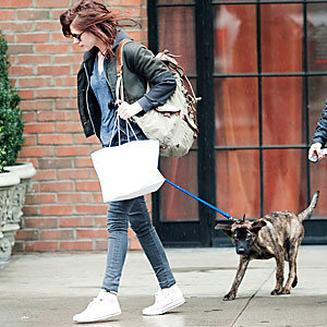 Kristen Stewart stays home to look after Robert Pattinson's dog!