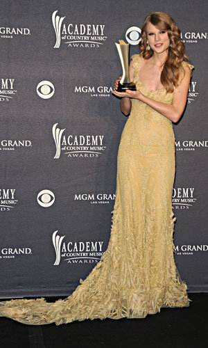 SEE PICS: Nicole Kidman and Taylor Swift's divine dresses at Academy of Country Music Awards