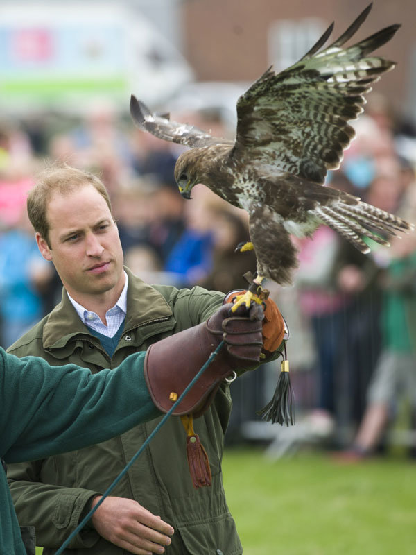 Prince William reveals all about parenting duties at Anglesey Show