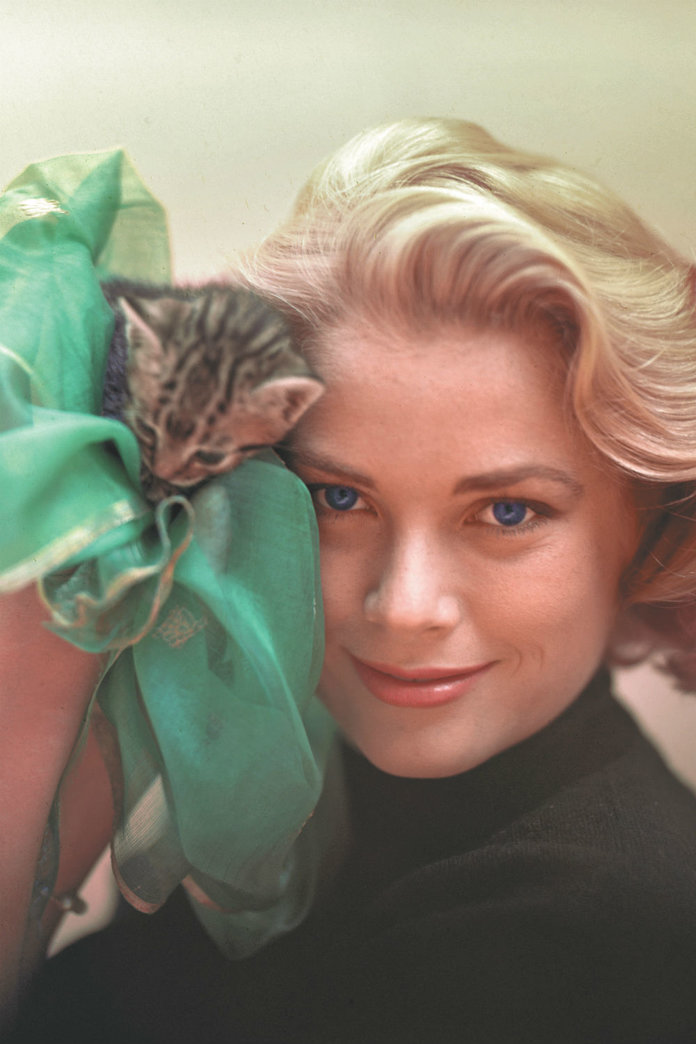 5 Reasons It's Cool To Be A Cat Lady