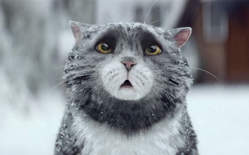 We Challenge You To Watch This Christmas Advert Without Sobbing