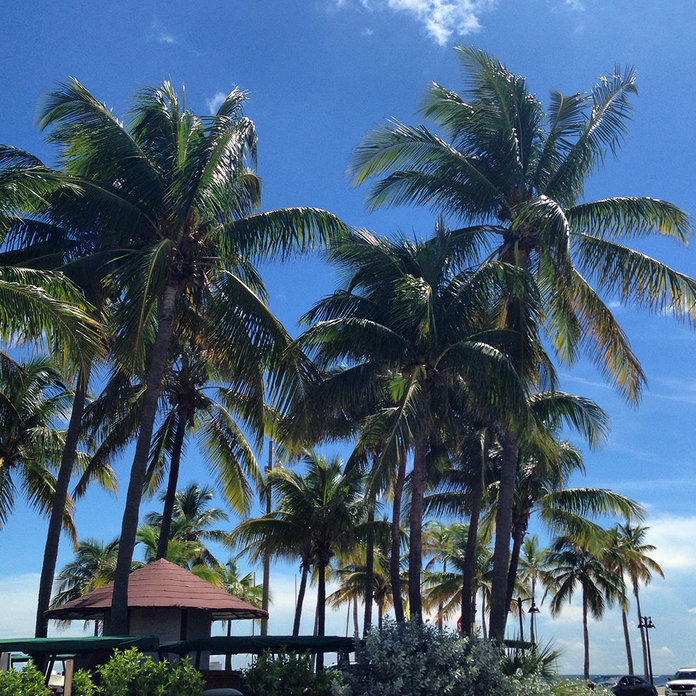 Why Fort Lauderdale Is No Longer Just A Spring Break Destination