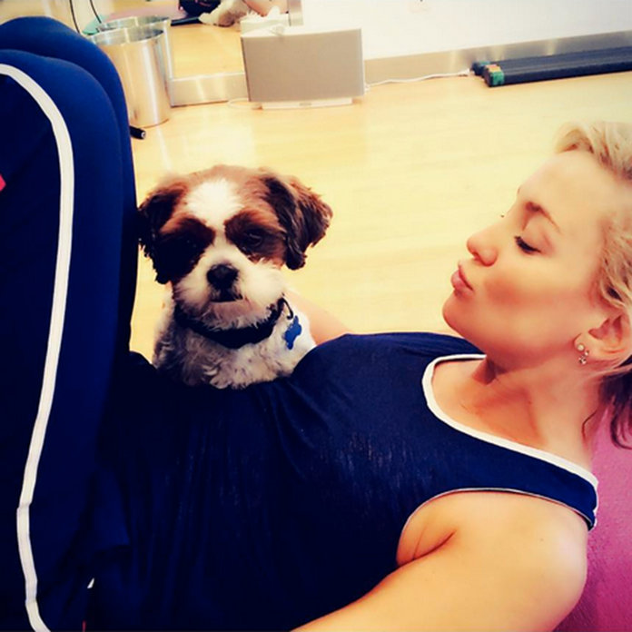 Celebrities Share Cute Pooch Pics To Celebrate #NationalPuppyDay