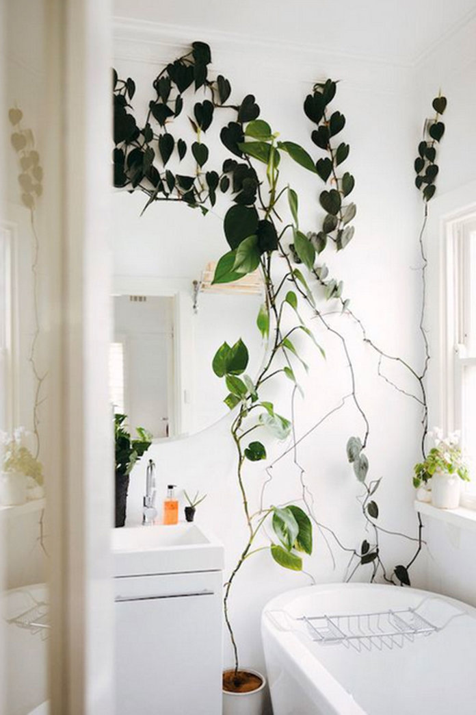 #PlantPorn: 9 Interior Ideas You Can Actually Do In A Small Flat