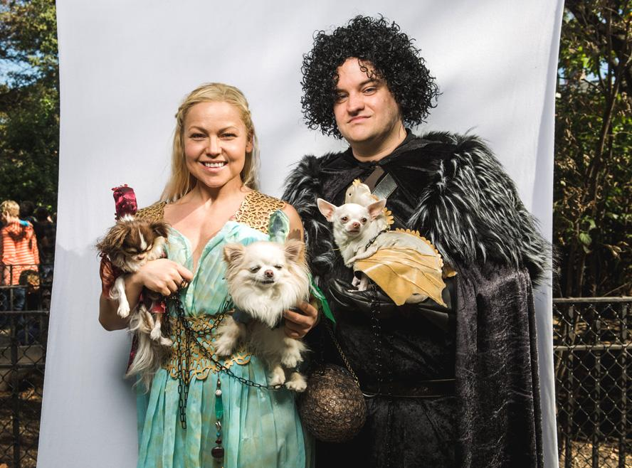 Dog Halloween Costumes - Game of Thrones